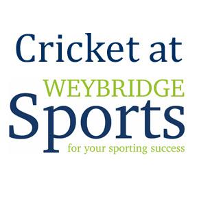 Cricket at Weybridge Sports